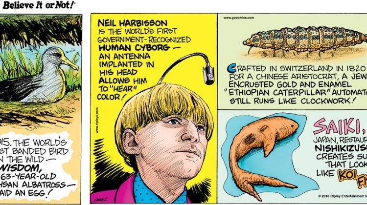 """In 2015, the world's oldest banded bird in the wild—Wisdom, a 63-year-old Laysan albatross—laid an egg! -------------------- Neil Harbisson is the world's first government-recognized human cyborg-an antenna implanted in his head allows him to """"hear"""" color! -------------------- Crafted in Switzerland in 1820 for a Chinese aristocrat, a jewel encrusted gold and enamel """"Ethiopian caterpillar"""" automaton still runs like clockwork! -------------------- Saiki, Japan, restaurant Nishikizushi creates sushi that looks like koi fish!"""
