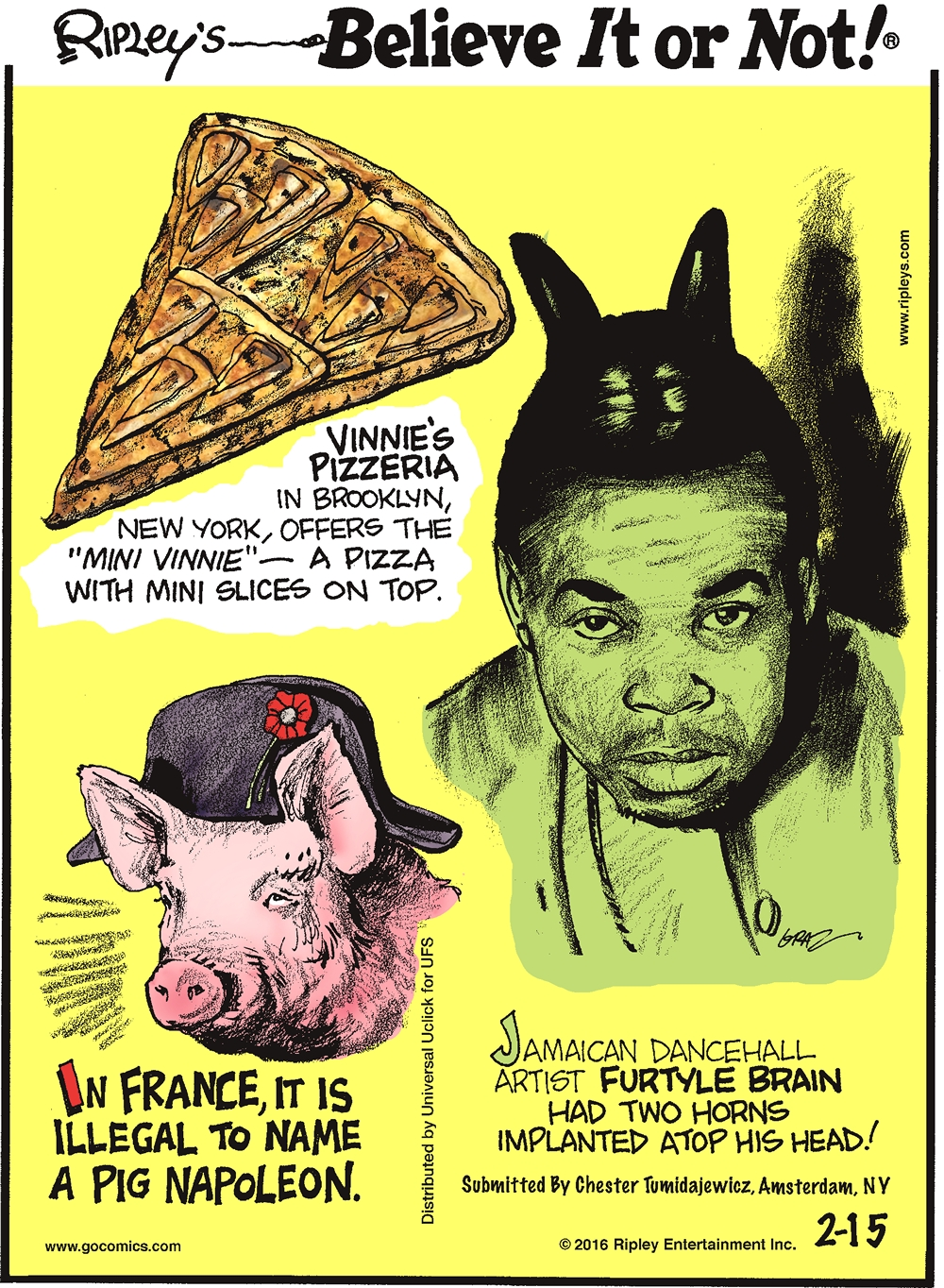 "Vinnie's pizzeria in Brooklyn, New York, offers the ""Mini Vinnie""—a pizza with mini slices on top. -------------------- In France, it is illegal to name a pig Napoleon. -------------------- Jamaican dance hall artist Furtyle Brain had two horn implanted atop his head! Submitted by Chester Tumidajewicz, Amsterdam, NY."