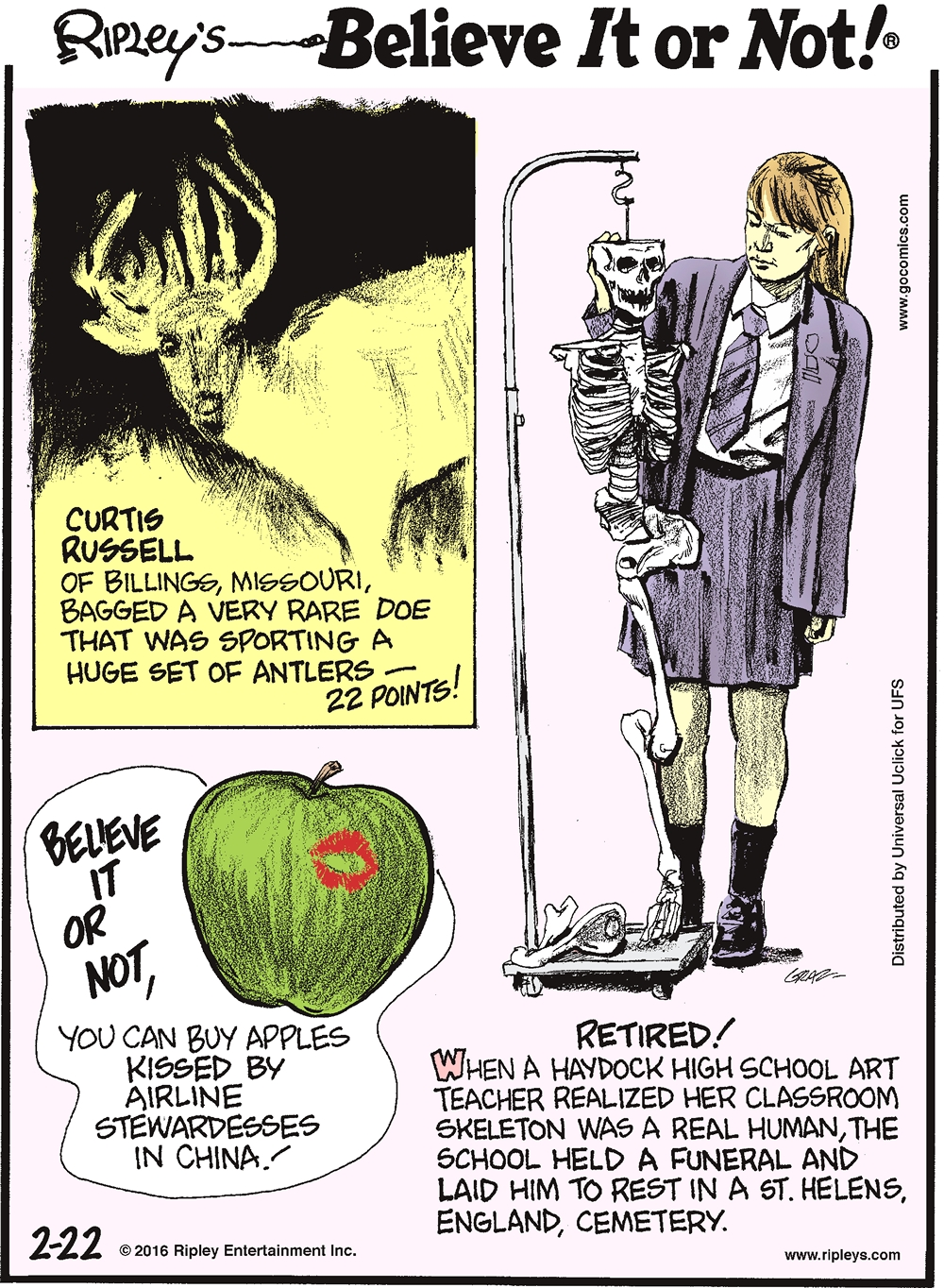 Curtis Russell of Billings, Missouri, bagged a very rare doe that was sporting a huge set of antlers—22 points! -------------------- Believe it or not, you can buy apples kissed by airline stewardesses in China! -------------------- Retired! When a Haydock High School art teacher realized her classroom skeleton was a real human, the school held a funeral and laid him to rest in a St. Helens, England, cemetery.