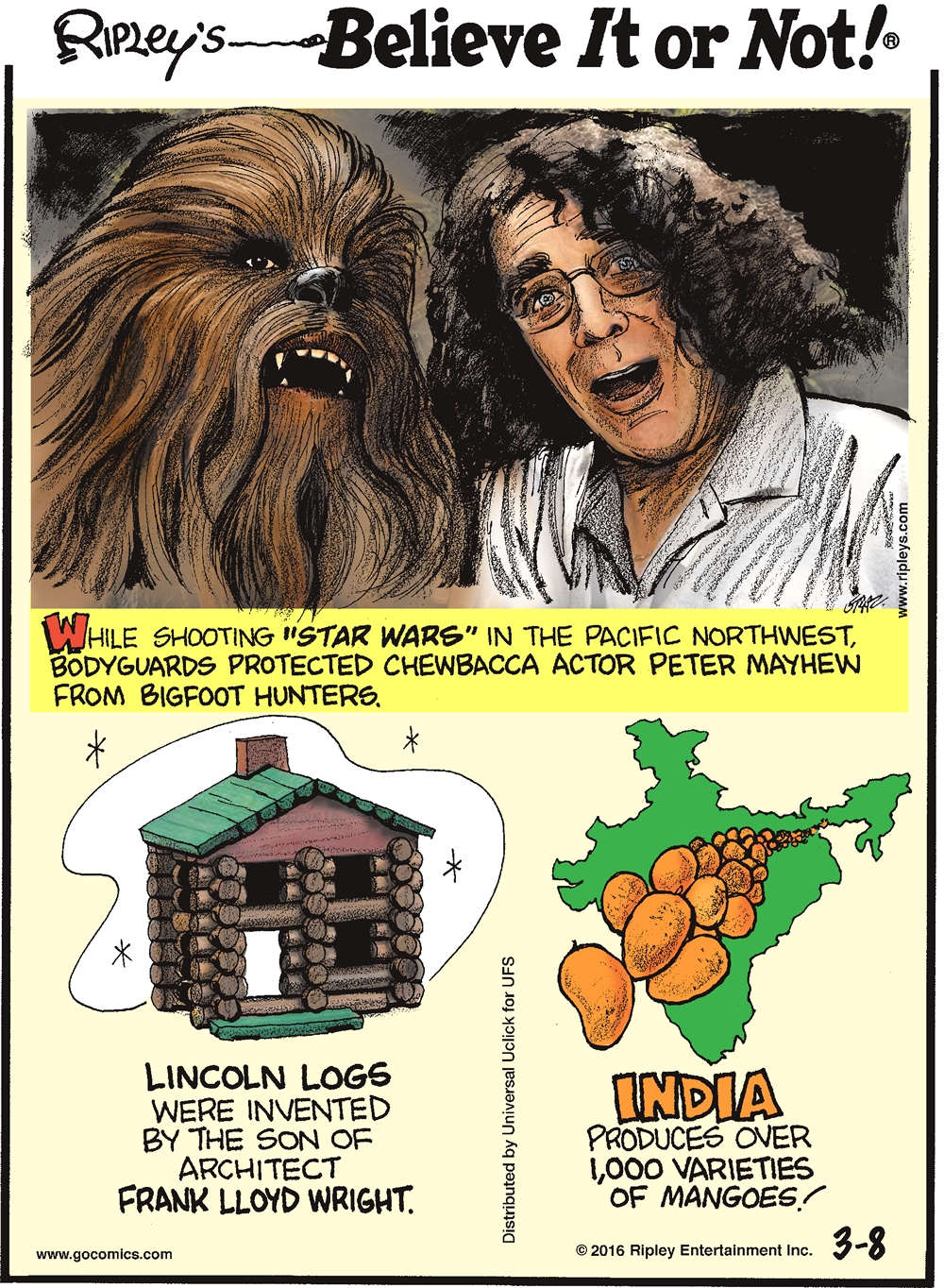 "While shooting ""Star Wars"" in the Pacific Northwest, bodyguards protected Chewbacca actor Peter Mayhew from bigfoot hunters. --------------------- Lincoln Logs were invented by the son of Architect Frank Lloyd Wright. --------------------- India produces over 1,000 varieties of mangoes!"