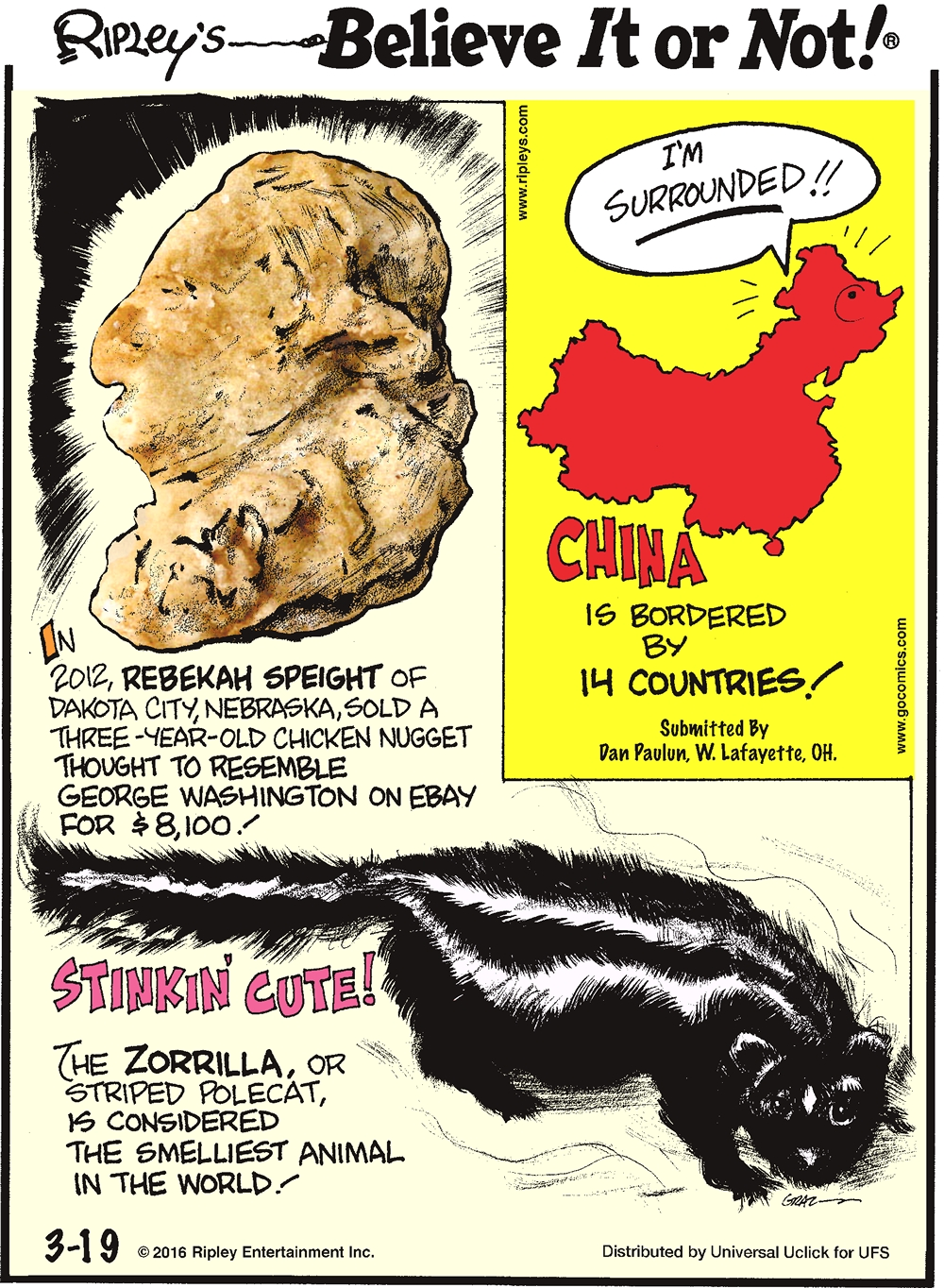 In 2012, Rebekah Speight of Dakota City, Nebraska, sold a three-year-old chicken nugget thought to resemble George Washington on eBay for $8,100. -------------------- China is bordered by 14 countries! Submitted by Dan Paulun, W. Lafayette, OH. -------------------- Stinkin' cute! The zorrilla, or striped polecat, is considered the smelliest animal in the world!