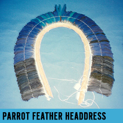 parrot headdress
