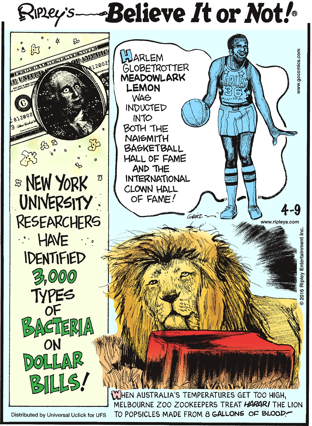 New York University researchers have identified 3,000 types of bacteria on dollar bills! -------------------- Harlem Globetrotter Meadowlark lemon was inducted into both the Naismith Basketball Hall of Fame and the International Clown Hall of Fame! -------------------- When Australia's temperatures get too high, Melbourne Zoo zookeepers treat Harari the lion to popsicles made from 8 gallons of blood!