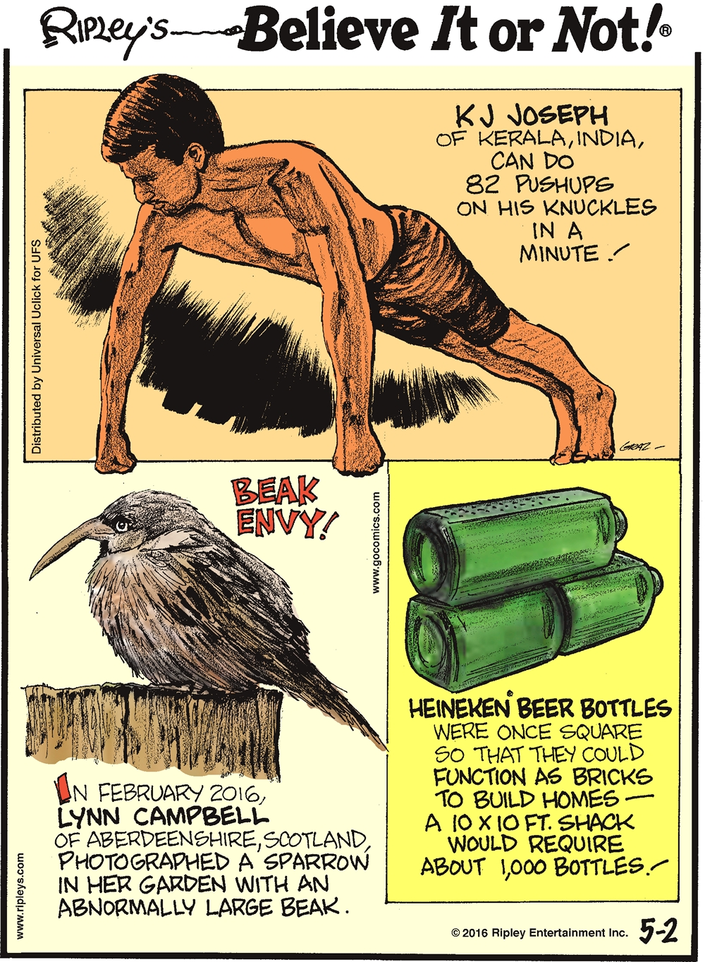 K J Joseph of Kerala, India, can do 82 pushups on his knuckles in a minute! -------------------- Beak envy! In February 2016, Lynn Campbell of Aberdeenshire, Scotland, photographed a sparrow in her garden with an abnormally large beak. -------------------- Heineken beer bottles were once square so that they could function as bricks to build homes—a 10 x 10 ft. square shack would require about 1,000 bottles!