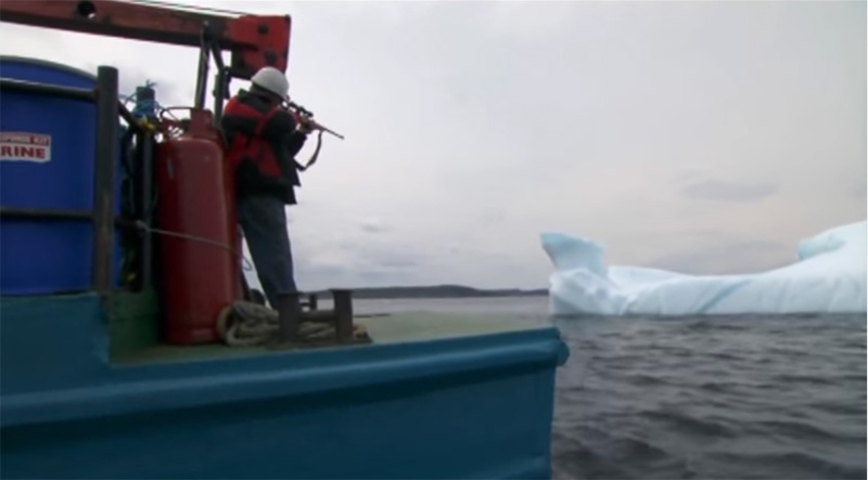 Iceberg Hunting is Real and Exactly What It Sounds Like
