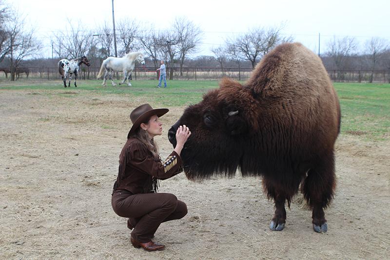 Uma mulher decidiu vender seu bisonte na internet e conseguiu um bom lar para ele