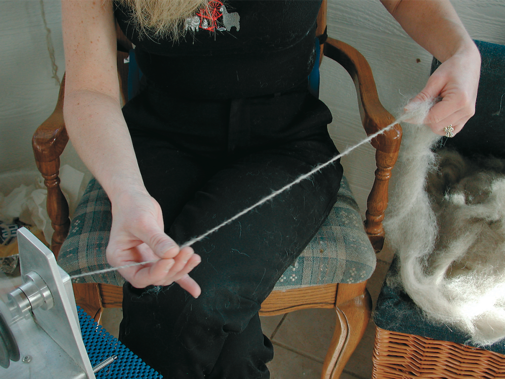 """Victoria spinning with only the finest material, 100% pure """"canine cashmere""""!"""