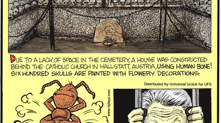 Due to a lack of space in the cemetery, a house was constructed behind the catholic church in Hallstatt, Austria, using human bone! Six hundred skulls are painted with flowery decorations. -------------------- Ants breathe through small holes all over their bodies! -------------------- Flirting is punishable by 30 days in jail in Little Rock, Arkansas!