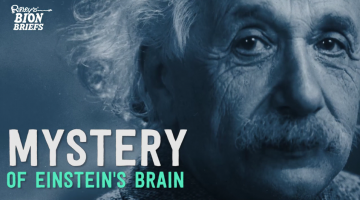 The Mystery of Einstein's Brain