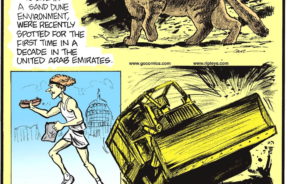 Arabian sand cats, the only cats to live in a sand dune environment, were recently spotted for the first time in a decade in the United Arab Emirates. -------------------- Runners in the half and half marathon in Washington DC must eat a chili dog and potato chips halfway to the finish. -------------------- Eighteen-year-old Evel Knieval attempted to do a wheelie with a bulldozer at his first job with a mining company, but he hit the power lines and knocked out the town's electricity.