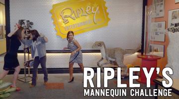 Ripley's Mannequin Challenge