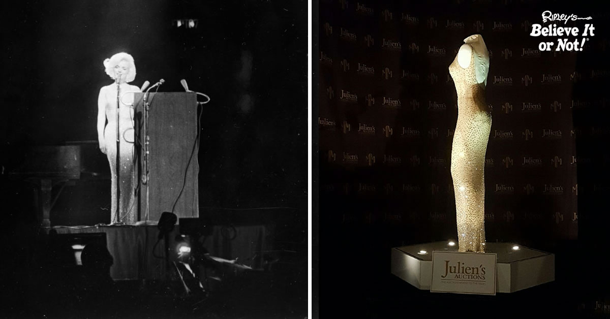 Happy Birthday, Mr. President – Ripley\'s Buys Iconic Marilyn Monroe ...