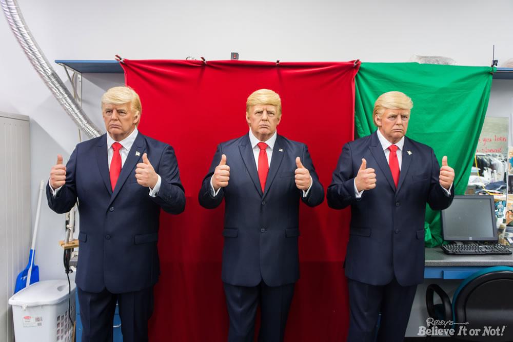 Wax Donald trump