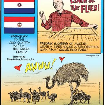 Paraguay is the only country with a two-sided flag! Submitted by Richard Gibson, Lafayette, LA -------------------- Fredrik Sjoberg of Sweden wrote a three-volume autobiographical work about collecting flies! -------------------- An ostrich can produce over 1,500 chicks in a lifetime!