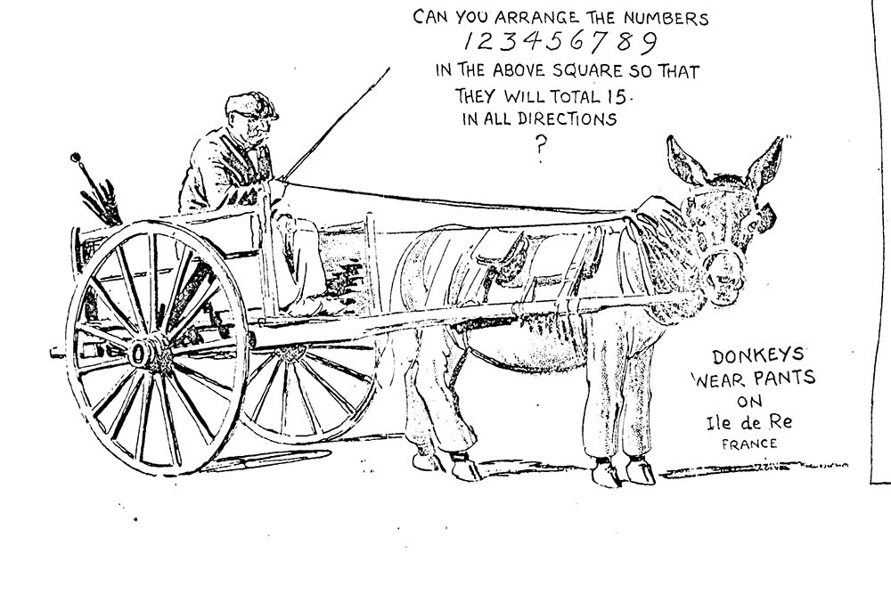 donkeys in pants ripley's cartoon