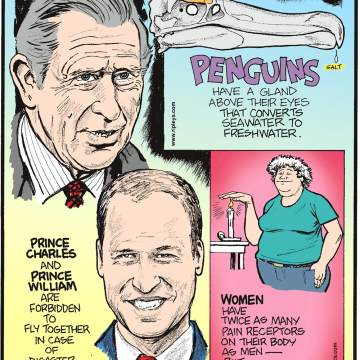 Penguins have a gland above their eyes that converts seawater to freshwater.-------------------- Prince Charles and Prince William are forbidden to fly together in case of disaster.--------------------- Women have twice as many pain receptors on their body as men - but a much higher pain tolerance.