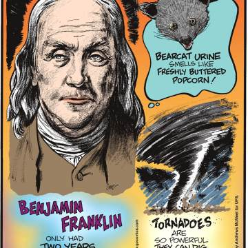 Benjamin Franklin only had two years of formal education.--------------------- Bearcat urine smells like freshly buttered popcorn!--------------------- Tornadoes are so powerful they can dig a hole in the ground three feet deep.