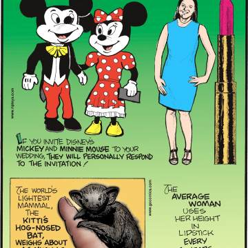 If you invite Disney's Mickey and Minnie Mouse to your wedding, they will personally respond to the invitation!------------------- The world's lightest mammal, the Kitti's Hog-Nosed Bat, weighs about as much as two M&M's candies.-------------------- The average woman uses her height in lipstick every five years.