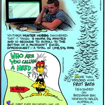 """Youtuber Hunter Hobbs discovered that it takes 9 hours, 36 minutes and 10 seconds to scroll to the bottom of a Microsoft Excel spreadsheet - a total of 1,048,576 rows.--------------------The first ever recorded use of the word """"nerd"""" is in Dr. Seuss' """"If I Ran the Zoo,"""" published in 1950.-------------------- More than 1000,000 huge fruit bats descended on Batemans Bay, New South Wales, Australia, in May 2016!"""