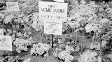 atomic gardening
