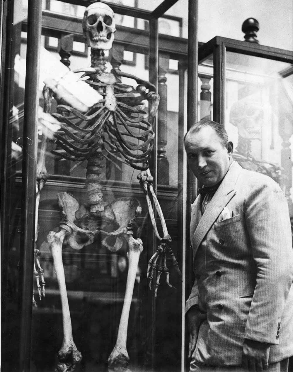 irish giant and robert ripley