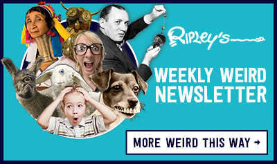 Ripley's Believe It or Not! Weekly Weird Newsletter