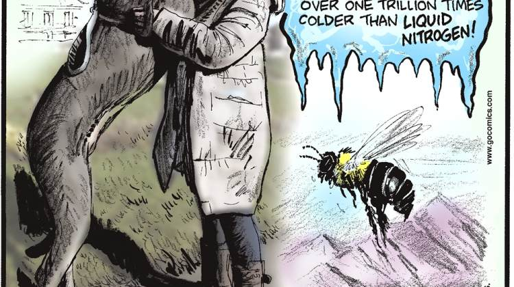 """In 2009, scientists in Helsinki, Finland created the coldest temperatures ever recorded - over one trillion times colder than liquid nitrogen!---------------------- Once the runt of the litter, England's Freddy the Great Dane is now the world's tallest dog, standing 7'6""""! Submitted by Dan Paulun, W. Lafayette, OH.-------------------- Bumblebees can fly at altitudes higher than Mount Everest."""