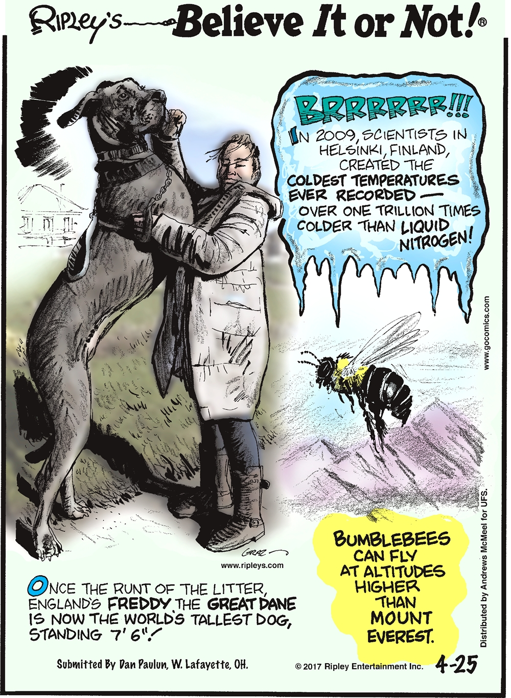 "In 2009, scientists in Helsinki, Finland created the coldest temperatures ever recorded - over one trillion times colder than liquid nitrogen!---------------------- Once the runt of the litter, England's Freddy the Great Dane is now the world's tallest dog, standing 7'6""! Submitted by Dan Paulun, W. Lafayette, OH.-------------------- Bumblebees can fly at altitudes higher than Mount Everest."