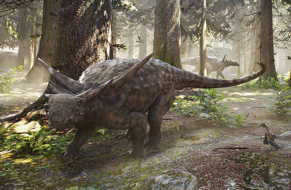 nodosaur render