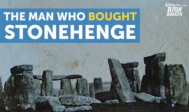 stonehenge auction