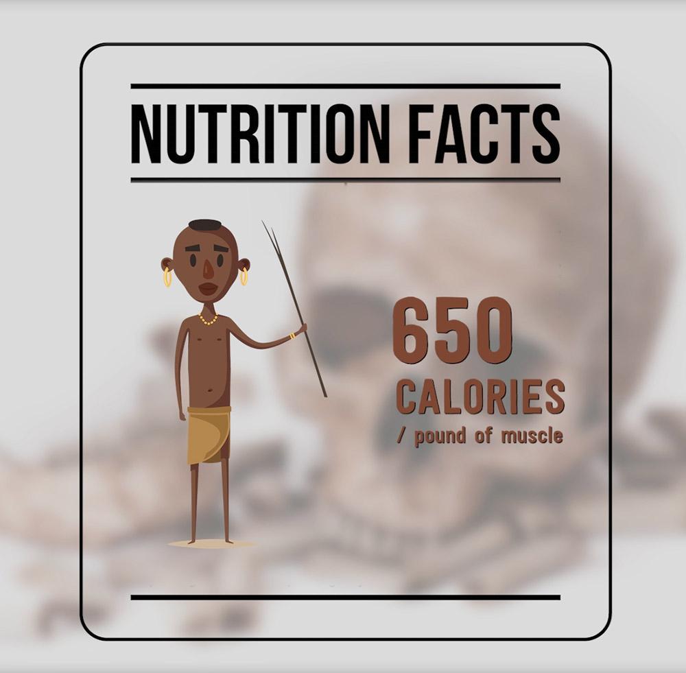 cannibals nutrition