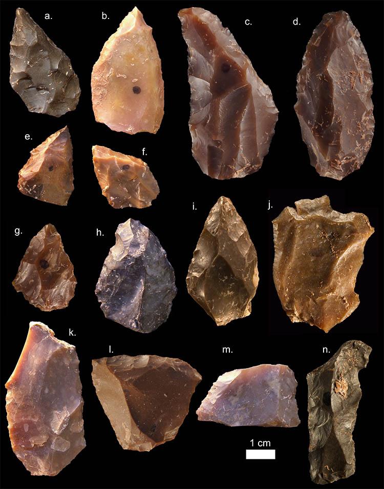 oldest hom sapiens tools