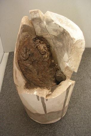 Nebiri's lungs