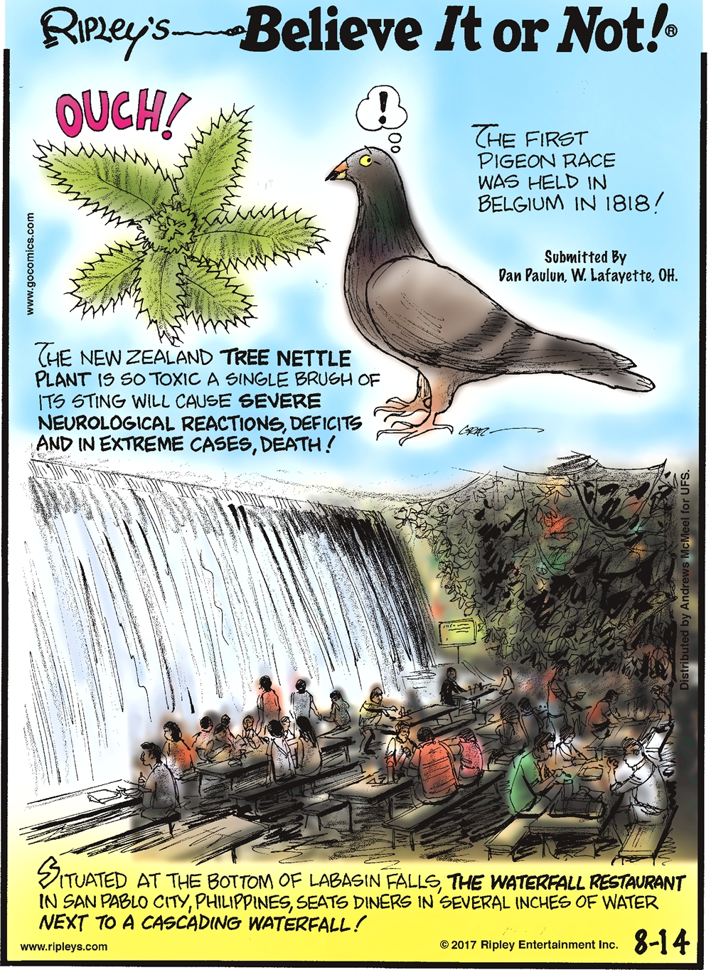 The New Zealand Tree Nettle Plant is so toxic a single brush of its sting will cause severe neurological reactions, deficits and in extreme cases, death!-------------------- The first pigeon race was held in Belgium in 1818! Submitted by Dan Paulun, W. Lafayette, OH.-------------------- Situated at the bottom of Labasin Falls, The Waterfall Restaurant in San Pablo City, Philippines, seats diners in several inches of water next to a cascading waterfall!