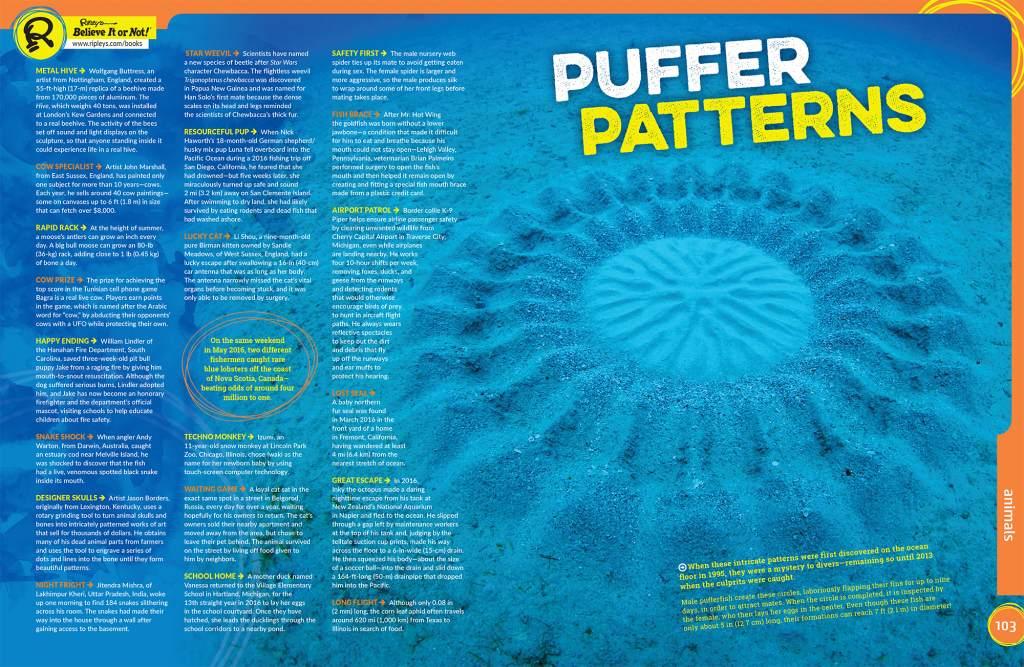 Puffer Patterns