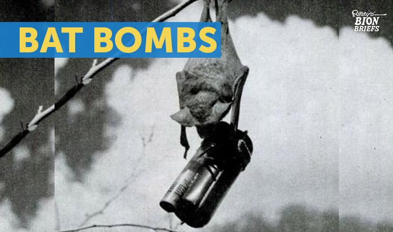 bat bombs