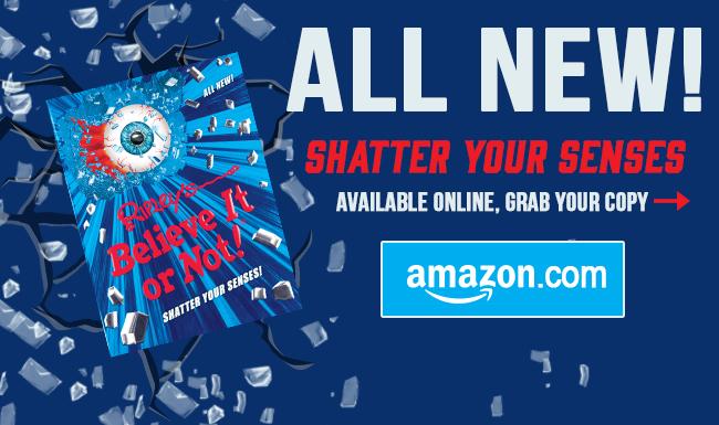 Buy Shatter Your Senses!