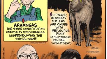 In Arkansas, the state constitution officially discourages mispronouncing the state's name!-------------------- In Finland, reindeer antlers are coated with reflective paint so that drivers can see them at night!-------------------- In April 2017, Zheng Jiajia of China designed and married a robot!
