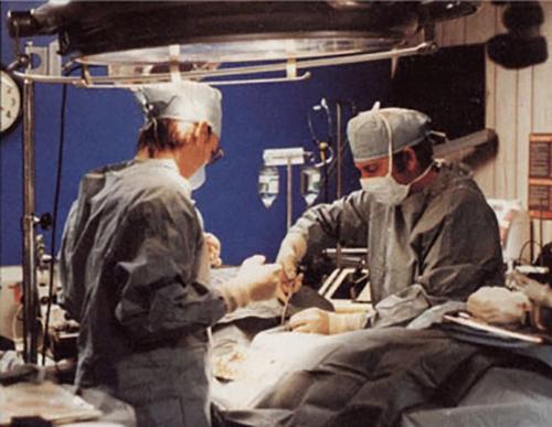 cryonics procedure