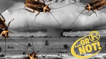 cockroaches survive nuclear apocalypse