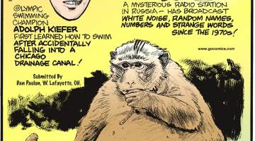 "The ""Buzzer"" - a mysterious radio station in Russia - has broadcast white noise, random names, numbers and strange words since the 1970s!-------------------- Olympic swimming champion Adolph Kiefer first learned how to swim after accidentally falling into a Chicago drainage canal! Submitted by Dan Paulun, W. Lafayette, OH.-------------------- In Thailand, an obese monkey nicknamed ""Uncle Fat"" was captured and placed on a diet after weighing in at 60 pounds - three times the average weight of a monkey! Submitted by Dan Paulun, W. Lafayette, OH."