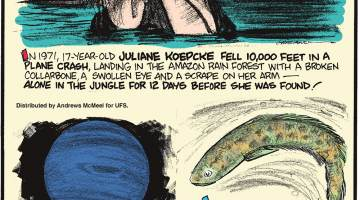 In 1971, 17-year-old Juliane Koepcke fell 10,000 feet in a plane crash, landing in the Amazon Rain Forest with a broken collarbone, a swollen eye and a scrape on her arm - alone in the jungle for 12 days before she was found!--------------------- Neptune has completed only one orbit of the Sun - one Neptune year - since it was first discovered in 1846!--------------------- As long as its skin stays moist, the Northern Snakehead Fish can stay out of water for several days! Submitted by Dan Paulun, W. Lafayette, OH.