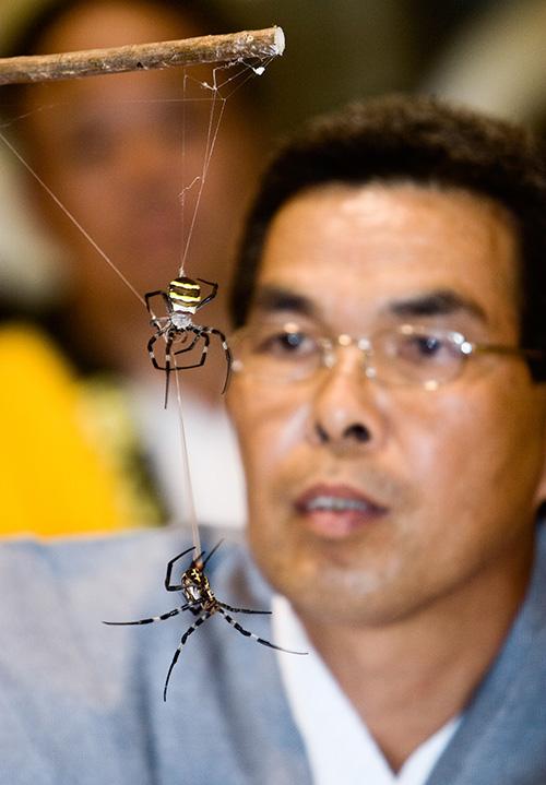 spider battles