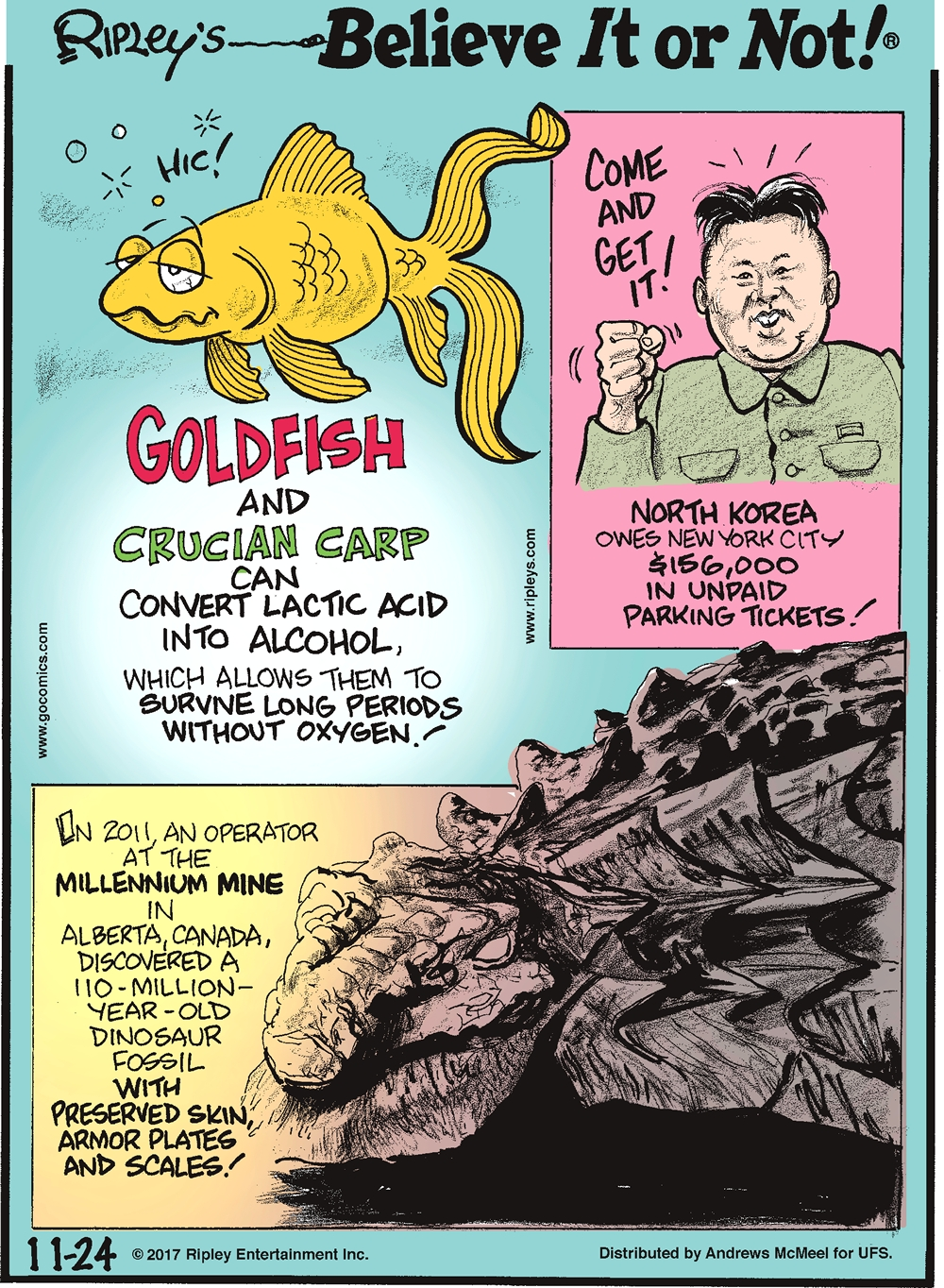 Goldfish and crucian carp can convert lactic acid into alcohol, which allows them to survive long periods without oxygen!-------------------- North Korea owes New York City $156,000 in unpaid parking tickets!-------------------- In 2011, an operator at the Millennium Mine in Alberta, Canada, discovered a 110-million-year-old dinosaur fossil with preserved skin, armor plates and scales!