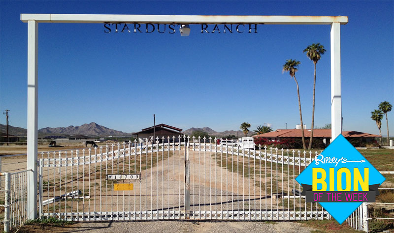alien-infested ranch