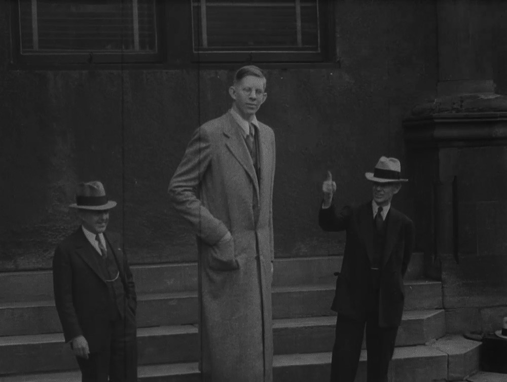 the tallest man in the world ever robert wadlow