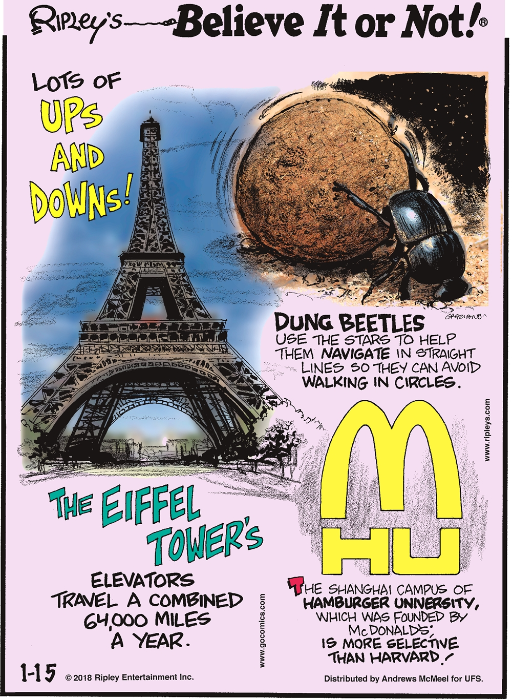The Eiffel Tower's elevators travel a combined 64,000 miles a year.-------------------- Dung beetles use the stars to help them navigate in straight lines so they can avoid walking in circles.-------------------- The Shanghai campus of Hamburger University, which was founded by McDonald's, is more selective than Harvard!