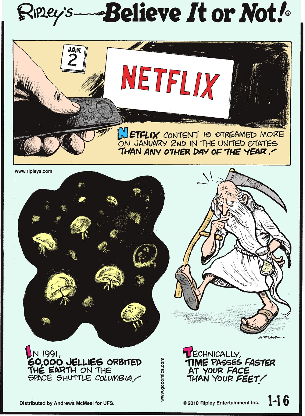 Netflix content is streamed more on January 2nd in the United States than any other day of the year!-------------------- In 1991, 60,000 jellies orbited the Earth on the space shuttle Columbia!-------------------- Technically, time passes faster at your face than your feet!