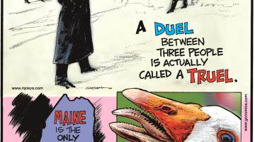 A duel between three people is actually called a truel.-------------------- Maine is the only U.S. state with a one-syllable name!-------------------- Geese have serrated tongues!