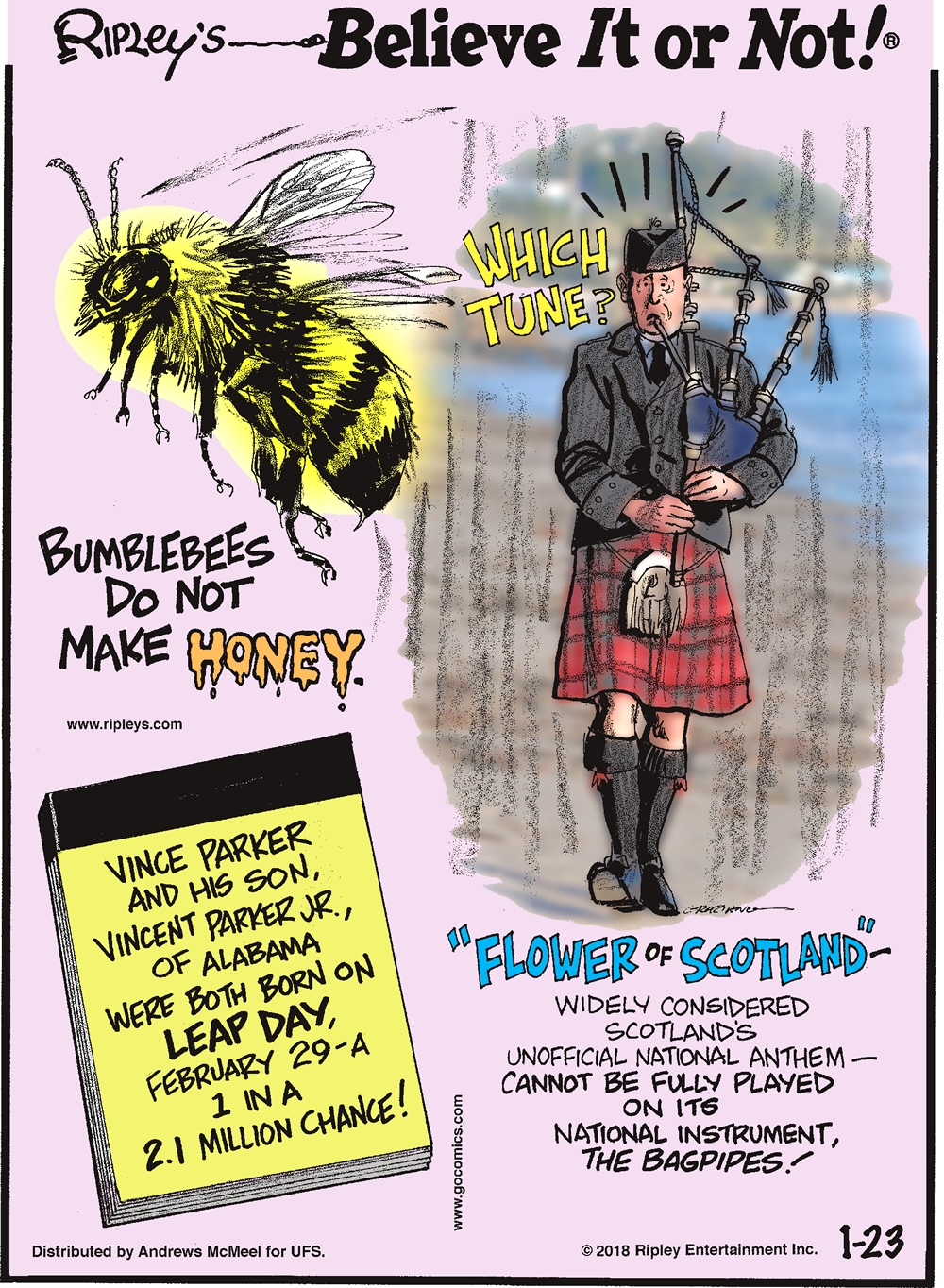 """Bumblebees do not make honey.-------------------- Vince Parker and his son, Vincent Parker JR., of Alabama were both born on Leap Day, February 29 - a 1 in a 2.1 million chance!-------------------- """"Flower of Scotland"""" - widely considered Scotland's unofficial national anthem - cannot be fully played on its national instrument, the bagpipes!"""